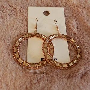Express rose gold earings